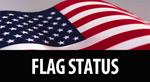 Flag Status Icon
